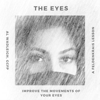 Movements of the eyes