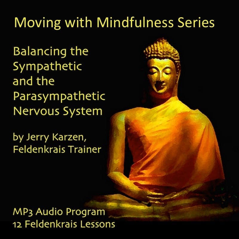 Moving with Mindfulness Audio Series