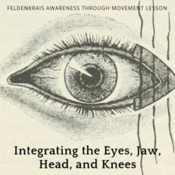 Integrating the Eyes, Jaw, Head and Knees